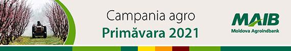 MAIB Primavara 2021